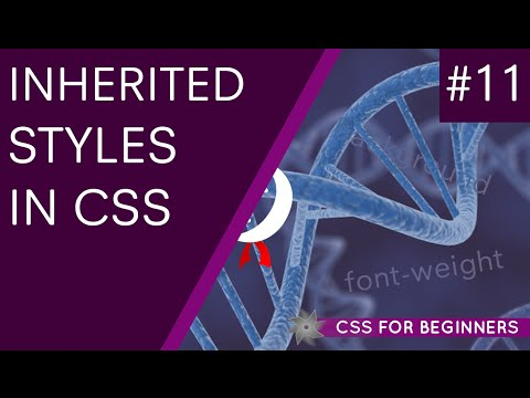 CSS Tutorial For Beginners 11 - Inheritance