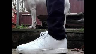 adidas advantage clean on feet