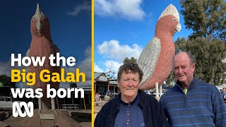 The biggest galah in Australia was built in the outback by the Venning family   ABC Australia
