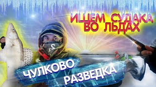 Рыбалка на МОСКВА реке Чулково во льдах Зимний спиннинг 2021