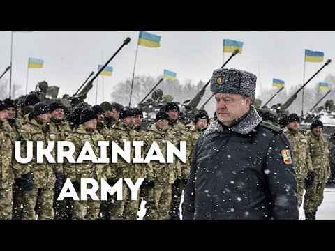 How Ukrainian Army Defend Itself from Russia - NATO and US Army Training Ukrainian Army