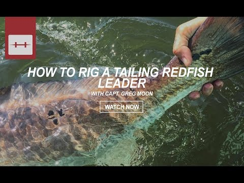 HOW TO RIG A TAILING REDFISH LEADER