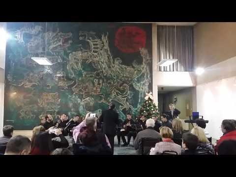 Mandolinski orkestar Skopje 23 12  2016