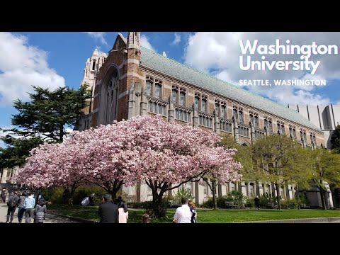 Visit to Washington University | Wonderful Campus in Seattle | Beautiful Nature View #EasyCookWorld