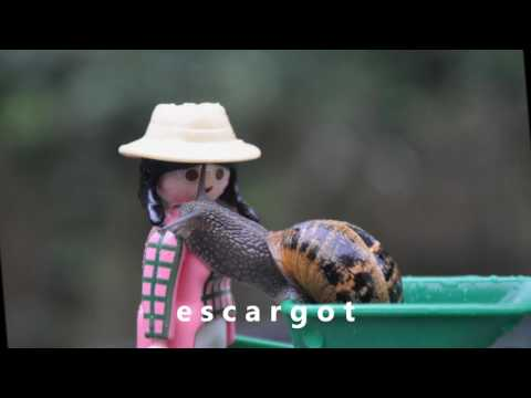 Comptine Petit Escargot avec Playmobil® - Bed song snail