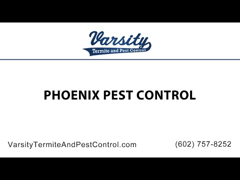 Phoenix Pest Control by The Varsity Team