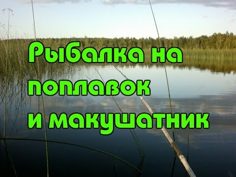 Рыбалка на поплавок и макушатники в июле