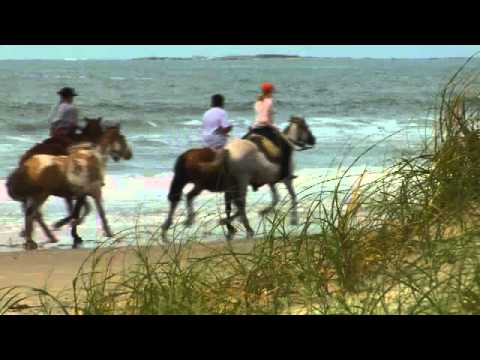 Uruguay Beach & Coastal Horse Riding