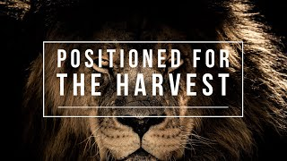 """Positioned For The Harvest"" -Pete Garza"