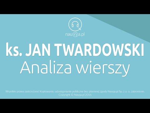 Jan Twardowski Analiza Wierszy Streszczenie I