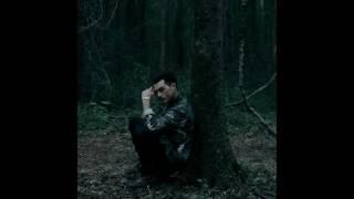 Michael Malarkey - Scars lyrics (Enzo, TVD 8x08)