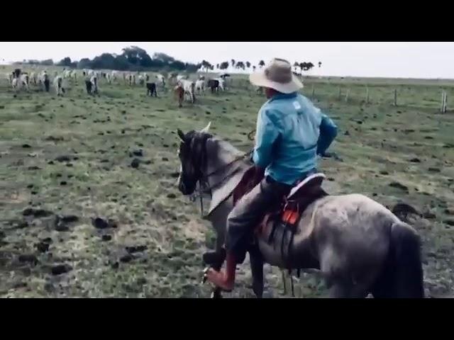 Llano adentro y a caballo