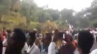 Qeeroo oromo 2016 bishoftu
