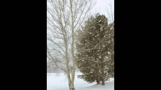 Winter Returns to Breckenridge, Colorado