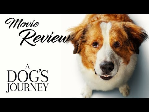 a-dog's-journey-movie-review