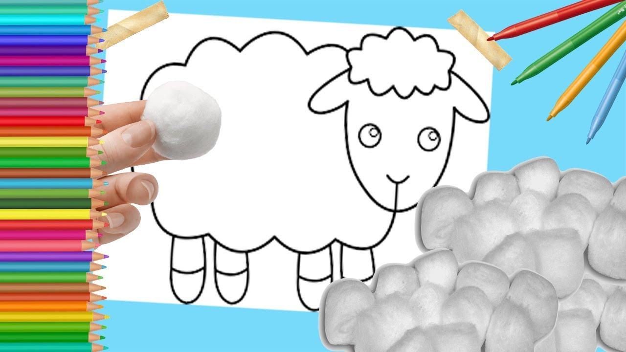 Ovelha Desenhar E Colorir Com Algodao Para Criancas Sheep