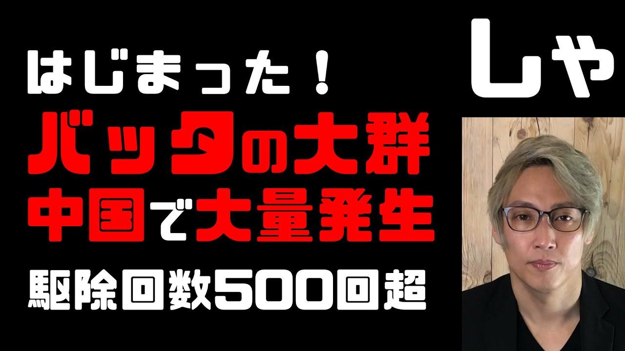 バッタ大量発生日本