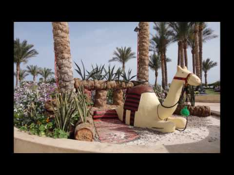 Отель Siva Sharm Resort & Spa 5 (ex.Savita Resort & Spa) Египет, Шарм-эль-Шейх