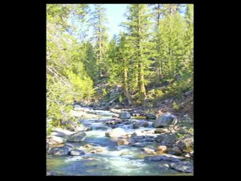 NCTV Interviews - Nevada County Land Trust