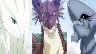 Fairy Tail - All Dragons