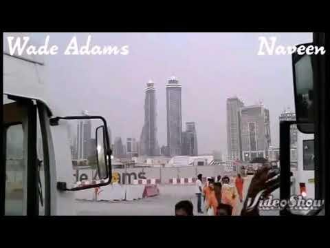 Wade Adams