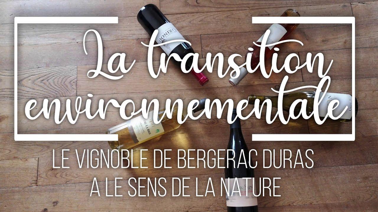 Les vins bios et la transition environnementale du vignoble de Bergerac Duras