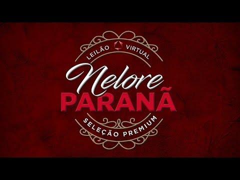 Lote 55   A1923 Paranã   PAR A1923 Copy