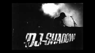 Watch Dj Shadow Def Surrounds Us video