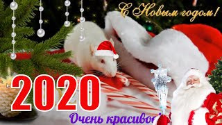 С Новым годом 2020🌲Новогоднее видео поздравление🌲видео открытка к НОВОМУ ГОДУ youtube🌲
