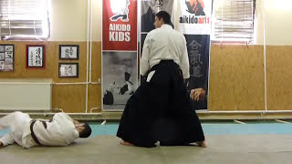 gyakuhanmi katatedori iriminage [TUTORIAL] Aikido basic technique