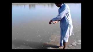 Fishing In Pakistan By KhanGroup 7