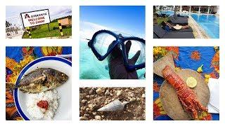 Exploring Diani Kenya: Snorkelling, Wasini Island & A Proposal