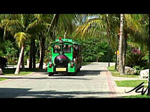 Travel Often Travel Cheap - Best Deals Mexico Riviera Maya