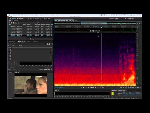 Adobe Audition CC 2014 Tutorial Sound Mixing and Sweetening:freedownloadl.com  adobe audition cc 2015 1.8.1.0, audio processing, free, radio, audit, master, download, softwar, develop, cc, music, song, adob, art, market, audio, window