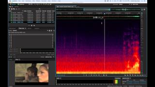 adobe Audition CC 2014 Tutorial Sound Mixing and Sweetening