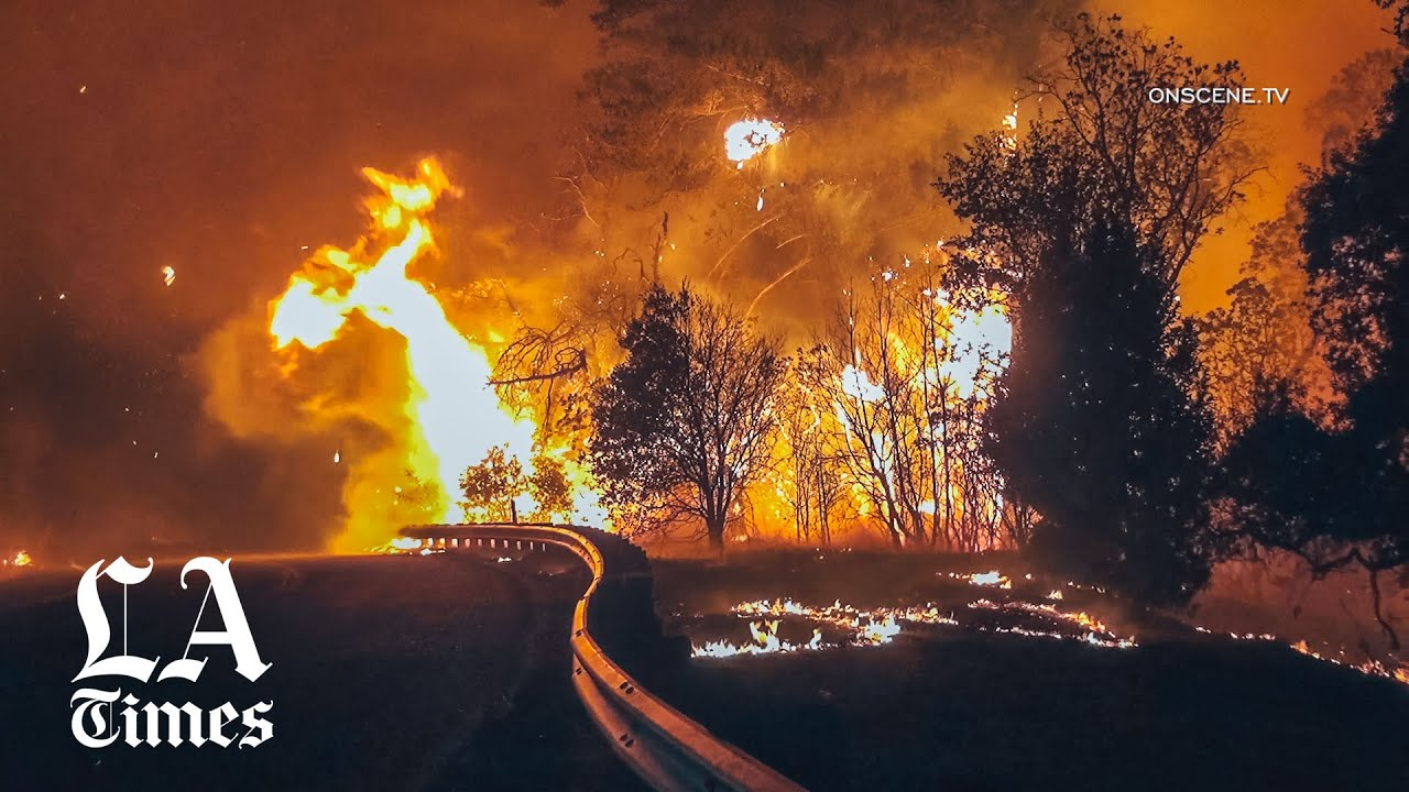 Blackouts, mass evacuations as Kincade fire grows amid high winds