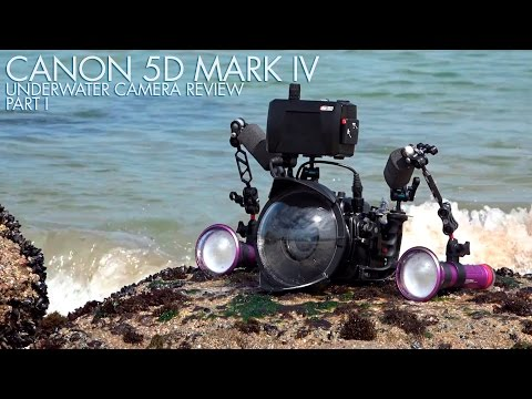Canon 5D Mark IV Underwater Camera Review - Part 1