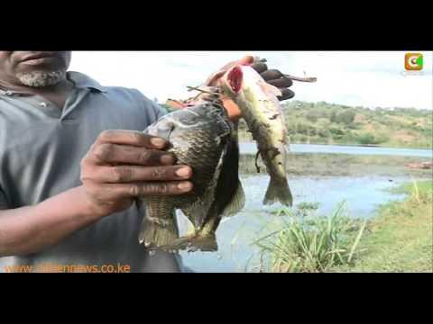 Kibaki's Retirement Home In Mweiga