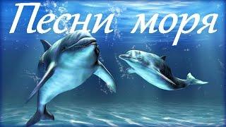 1 Hr - Пение Дельфинов и Звуки Океана / Dolphins and Ocean Sounds