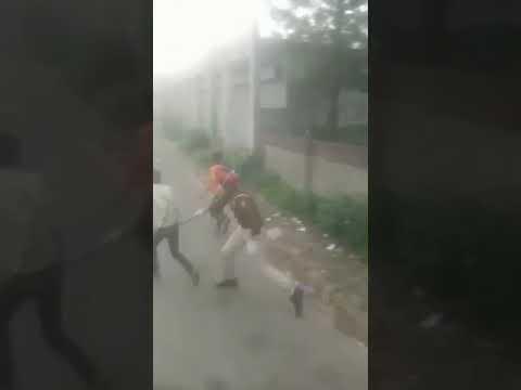Индия, борьба с кроновирусом