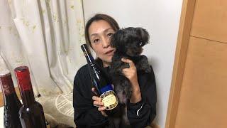 バレンタインデーワイン飲みライブ