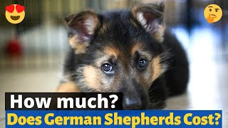 What's the price of a German Shepherd puppy?