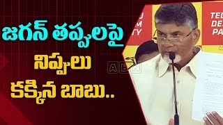 Chandrababu Naidu Speech Over Banning ABN Channel in AP