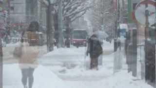 ダイアナ・ガーネット Diana Garnet 「津軽海峡冬景色」