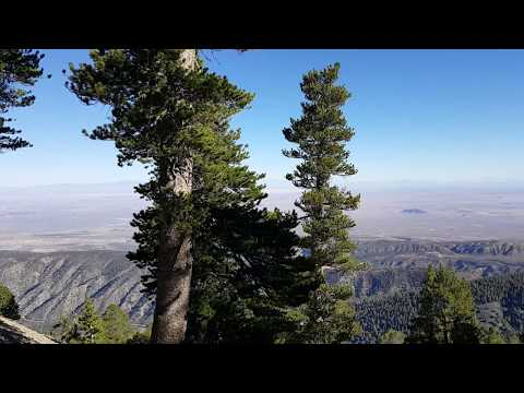 Vincent Gap to Mt Baden Powell hike 91618