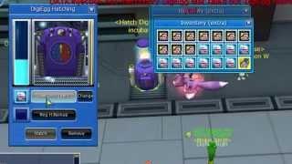Digimon Masters Online Challenge #1 - Hatch 5/5 Veedramon Size 128%+