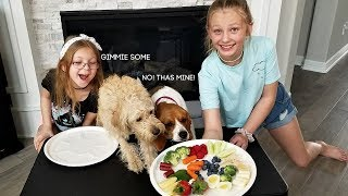 Dog Reviews Food With Sister!!! - Mia and Bella Taste Test!!!
