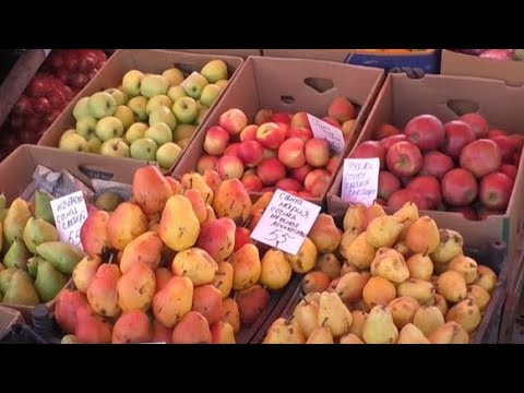 Телеканал Simon: Чи вродили яблука в Харкові та коли будуть найдешевшими