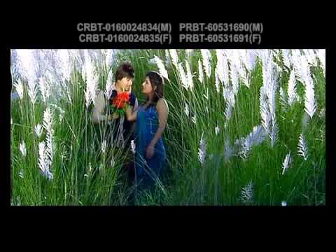 Phool Le Irshya Garla | Mousam Gurung & Purnakala BC | Shital Shijan Digital