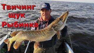 Твичинг щук на Рыбинском Водохранилище 2019